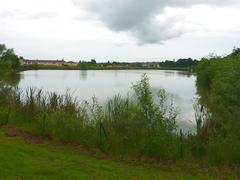 Acacias lake